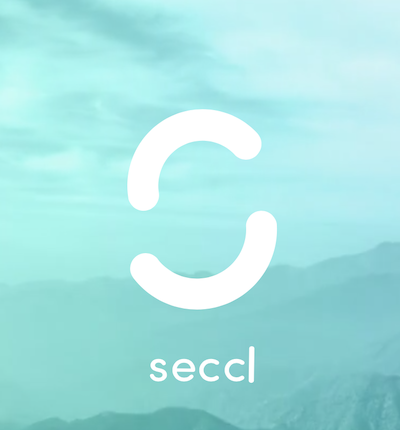 Case Study: Managing the £10m Sale of Seccl to Octopus